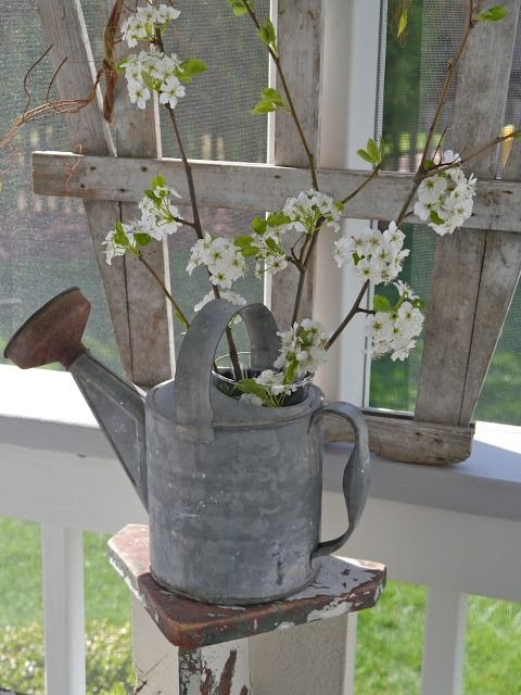 LoVe the FLOWERING BRANCHES in-the-watering-can...