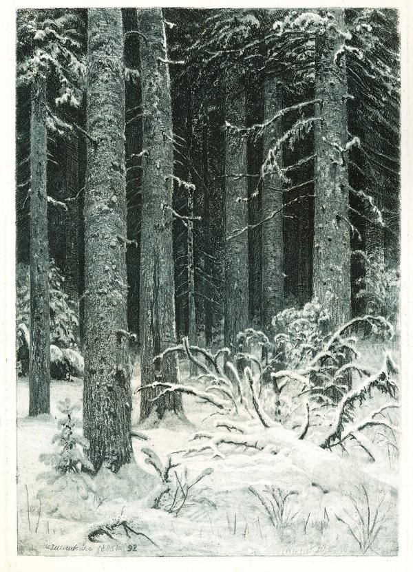 И.И. Шишкин. Дремучий лес. (Темный лес). 1885 г. Бумага, офорт