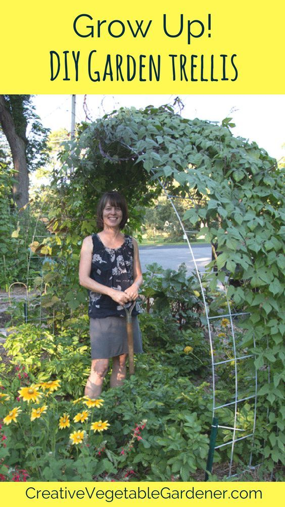 Grow more food in the same space and add beauty to your garden with this easy to build trellis.