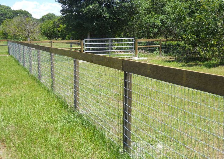 Best 25 Goat Fence Ideas On Pinterest Goat Pen Goat