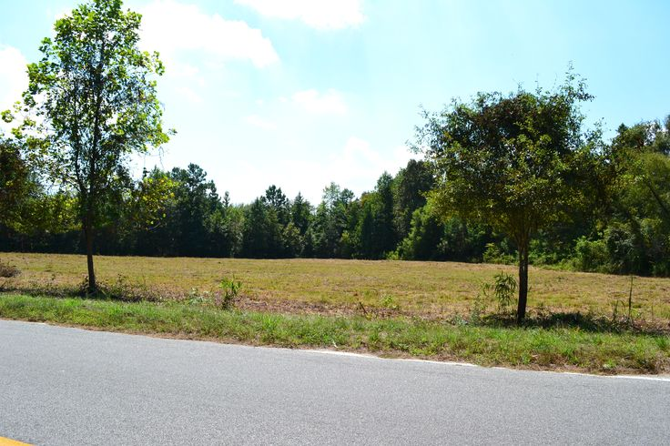Mauss Hill; 2.48 acre lot; 21 miles from Edisto Beach!!!