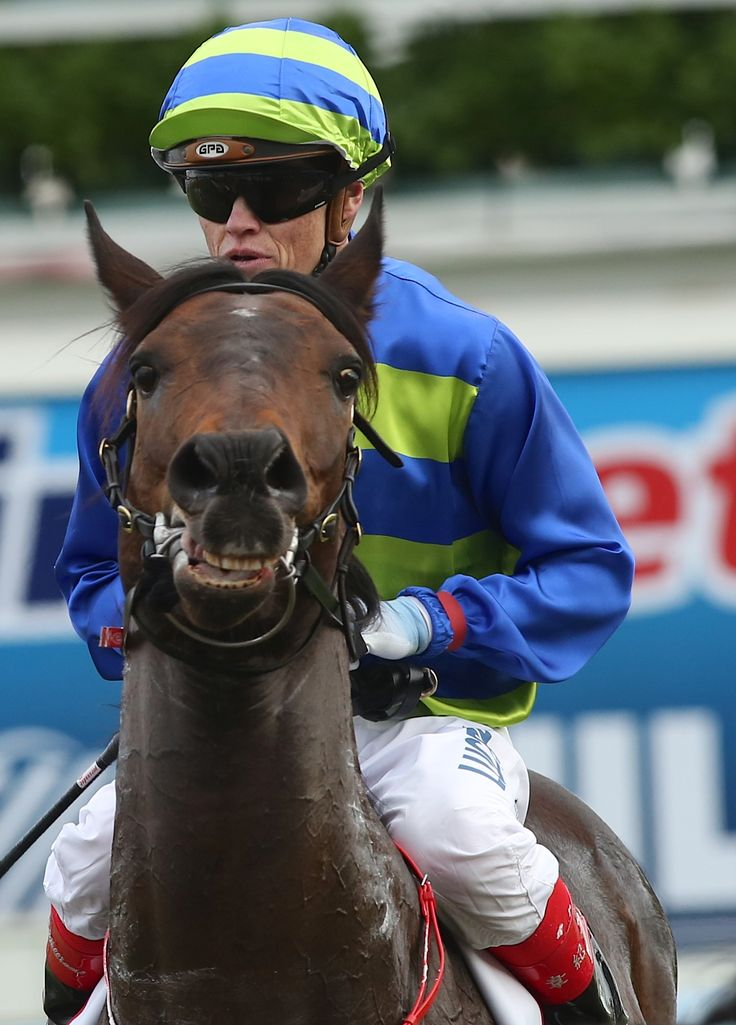 Jockey Craig Williams and Girl Guide after winning the Sportingbet Sprint Series Heat 2 Stakes