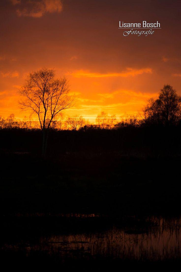 Zonsondergang bij Engbertdijksvenen Vriezenveen. Nederland.