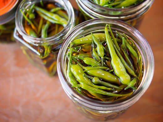 Radish Seed Pods (and Some Pickles) | Garden Betty