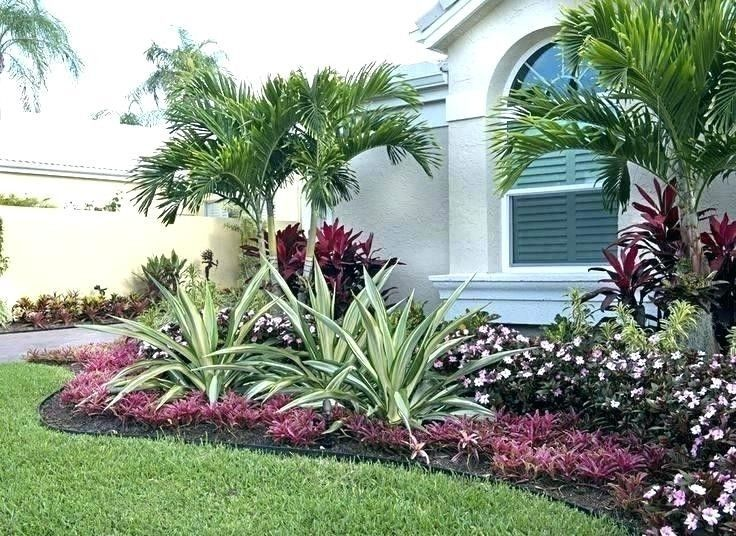 Low Maintenance Landscaping Ideas For Front Of House Low