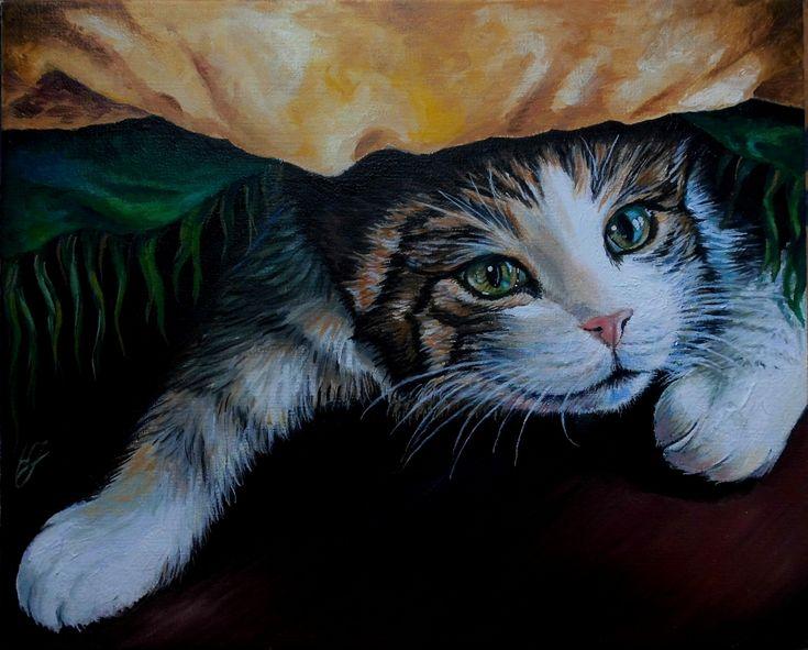 Portret kotki Sznurci obraz olejny