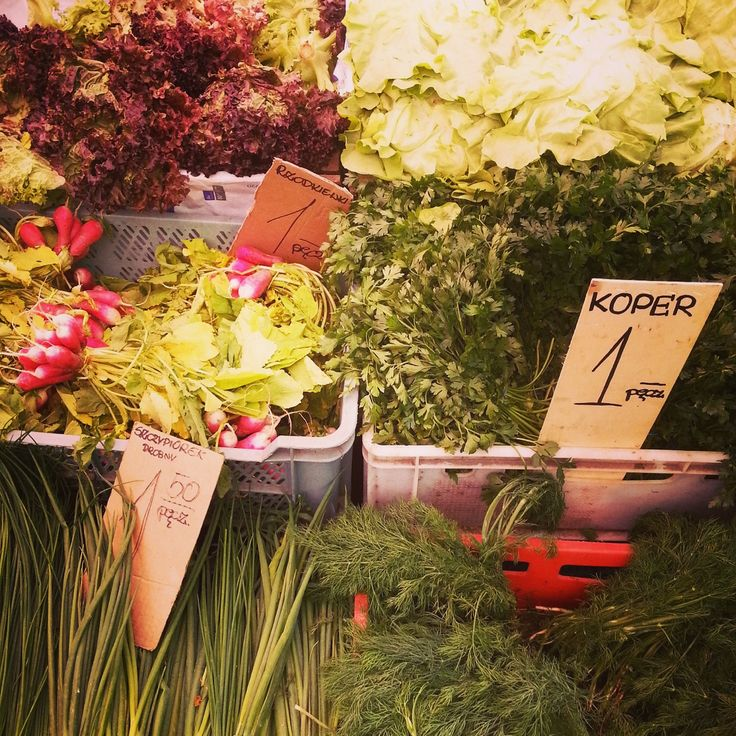 Where to buy fresh fruit, veggies, diary and meat in Warsaw? We like to go to Hala Mirowska.