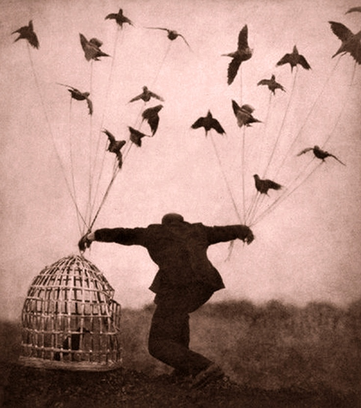 La jaula se ha vuelto pájaro / Alejandra pizarnik.