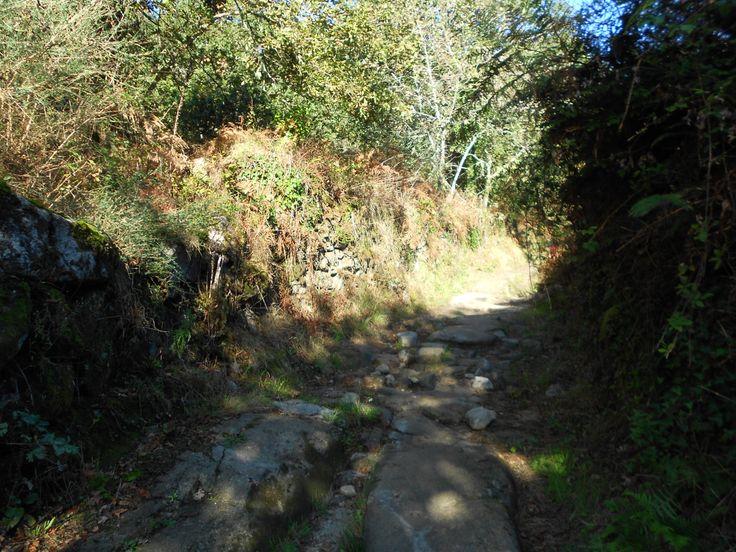 www.caminhoportosantiago.com www.waytosantiago.com