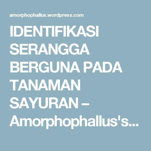 IDENTIFIKASI SERANGGA BERGUNA PADA  TANAMAN SAYURAN – Amorphophallus's Blog