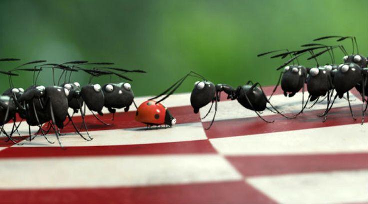 In fatto di igiene, le formiche possono insegnarci qualcosa. Infatti è stato osservato che esse ricavano degli appositi spazi, all'interno dei loro nidi ad