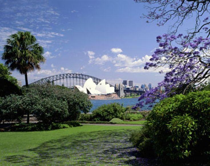 Royal Botanic Garden in Sydney, NSW