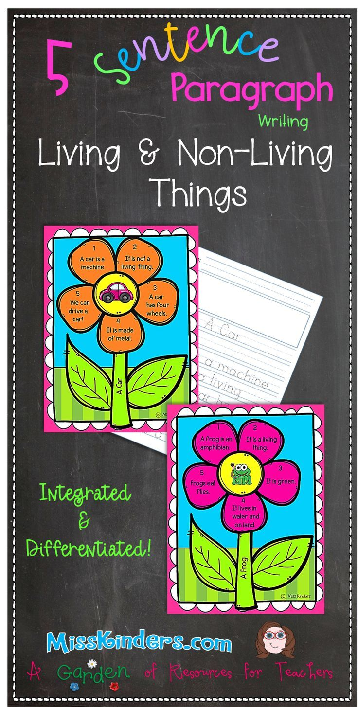 Are Your Kindergarten Students Struggling With Writing A Paragraph This 5 Sentence Paragraph Combines W Kindergarten Writing The Teacher Team Reading Centers [ 1454 x 736 Pixel ]