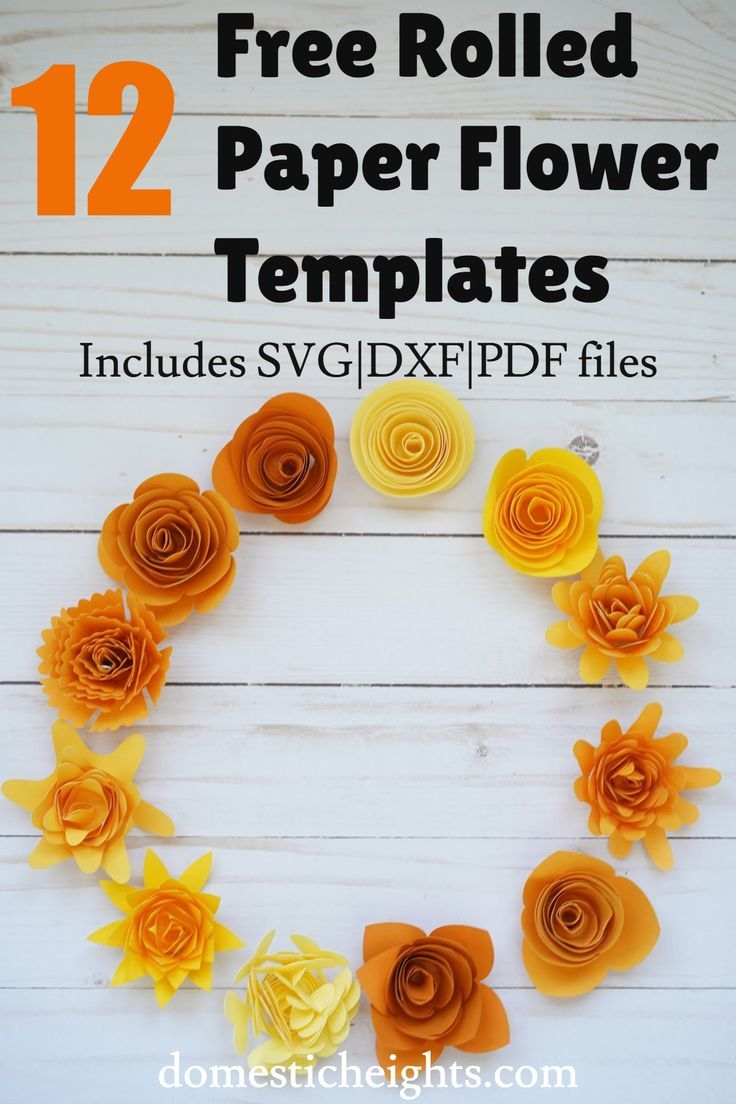 12 Free Rolled Flower Svg Templates Diy 3d Paper Flowers Paper