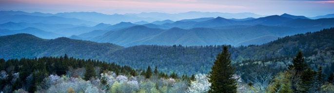 Explore Asheville, NC   Asheville, NC's Official Tourism Web Site