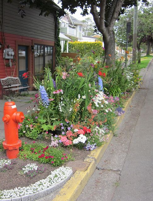 42 best images about curbside garden on pinterest front for Curbside garden designs