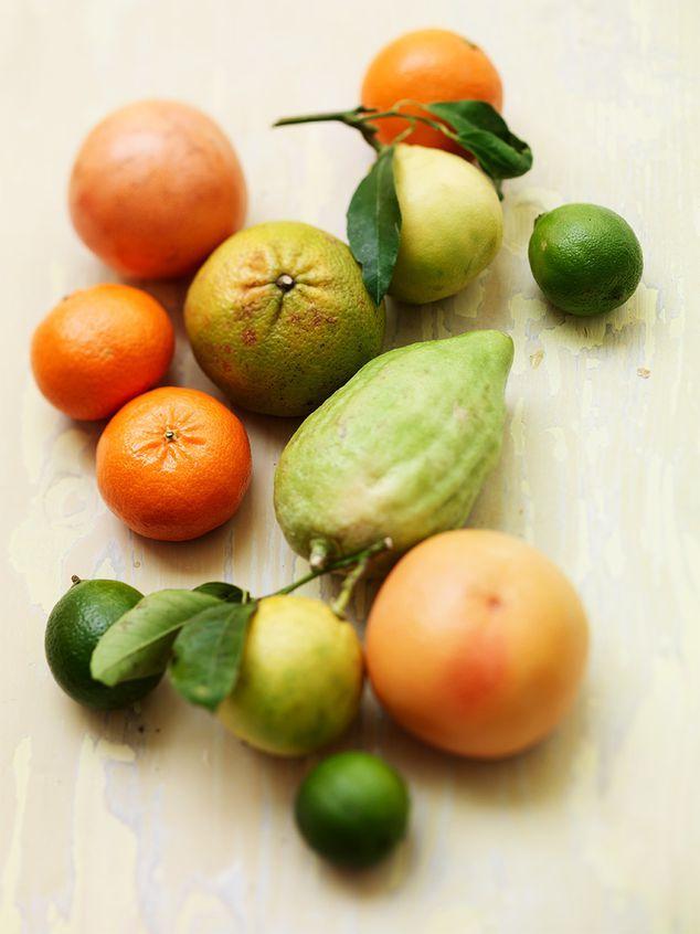 basisschool: citrusfruit | ZTRDG magazine