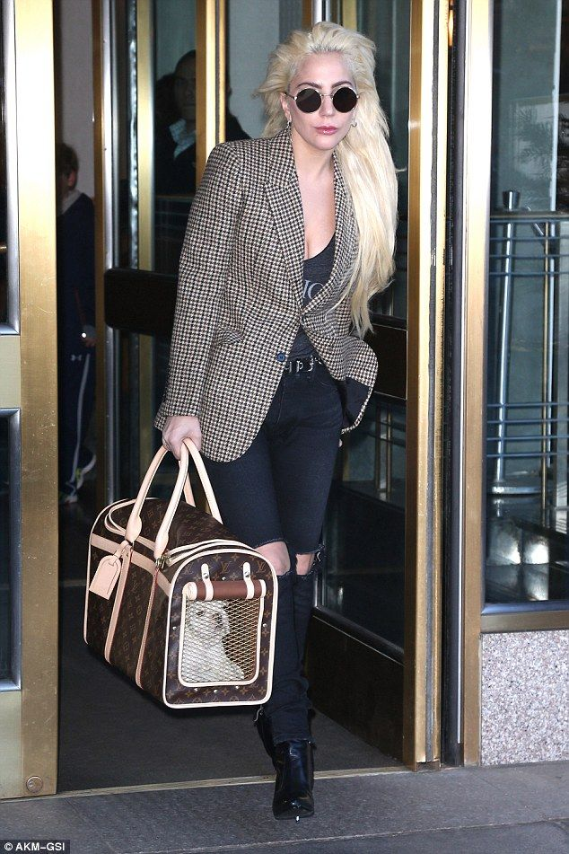 It's a dog's life: Lady Gaga carried her new puppy around New York in a £2,000 Louis Vuitton bag this week