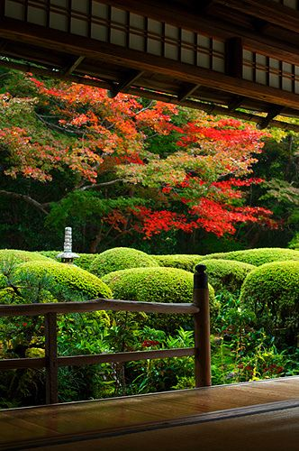 Shisen-do in autumn, Kyoto, Japan