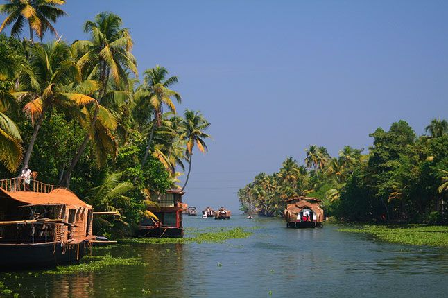 The key element that attracts the travellers to the backwater stretches in Kerala is the complexity of the waters and the unique water life in and around the waters. Peaceful water rides along the palm fringed backwaters destinations with a mesmerizing view of the sunset and lush green paddy fields along the waters act as the primary attraction of the place.