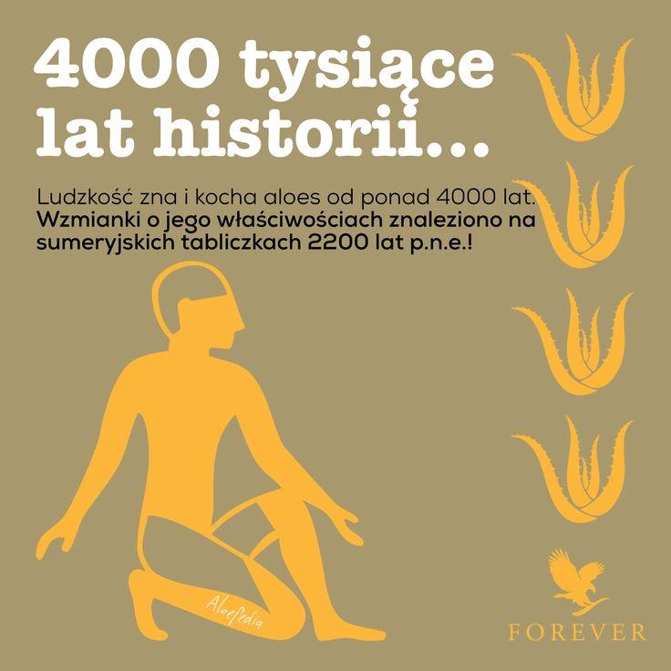 Aloes to 4000 tysiące lat doświadczeń. I niesamowita przyszłość. Forever, na zawsze.
