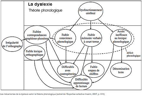 Carte Mentale Sandrine Meldener M2 Didactique Des