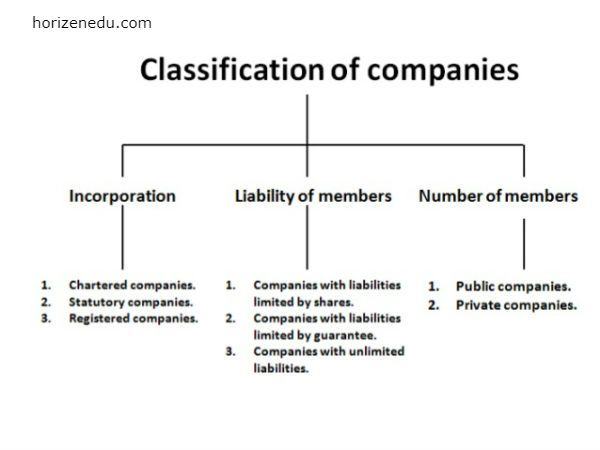 Type Of Company Definition Origin Features Finance Education Public Company