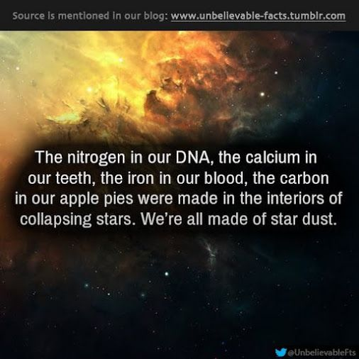 The nitrogen in our DNA, the calcium in our teeth, the iron in our blood, the carbon in our apple pies were made in the interiors of collapsing stars.  We'er all made of star dust.