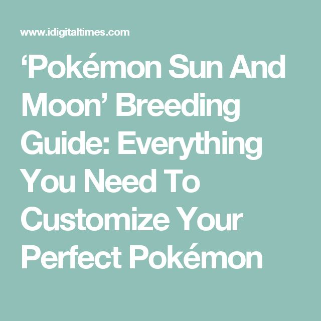 'Pokémon Sun And Moon' Breeding Guide: Everything You Need To Customize Your Perfect Pokémon
