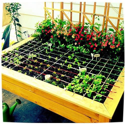 Unique Raised Bed Garden Ideas: 1000+ Ideas About Cheap Raised Garden Beds On Pinterest