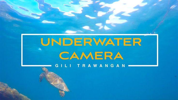 Gili Trawangan. Underwater camera. January 2015 For more info - http://trueresort.net