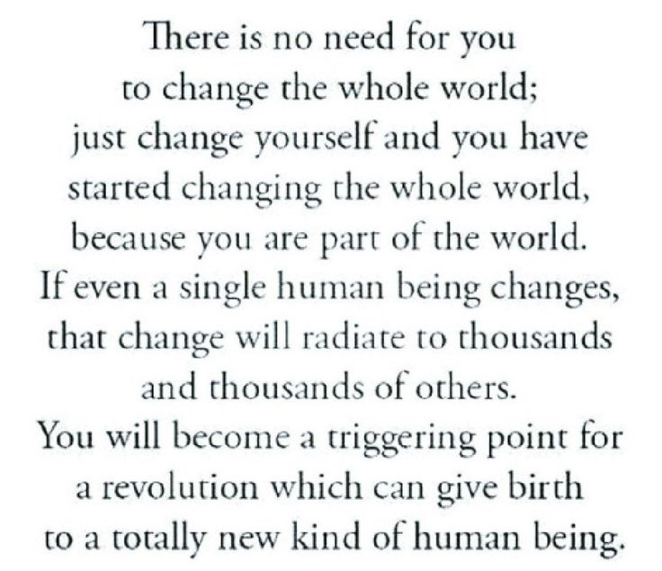 Change The World Change Yourself Quote: 25+ Best Stop Trying Quotes On Pinterest