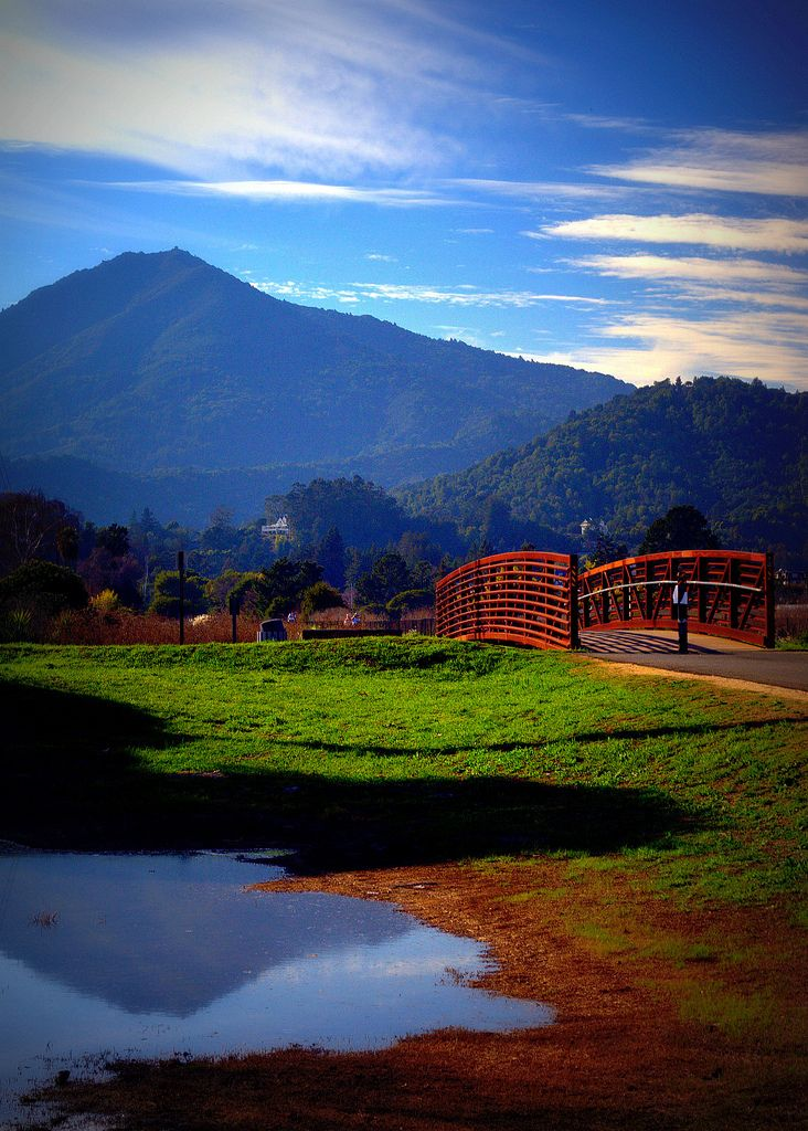 Mt. Tamalpais from Corte Madera, California   #livingincortemadera #cortemaderacalifornia