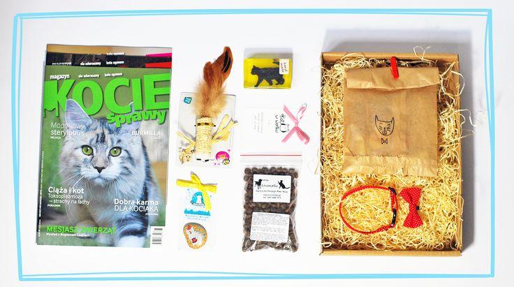 Zawartość czerwcowej paczki :) #niespodzianka #paczka #kot #koty