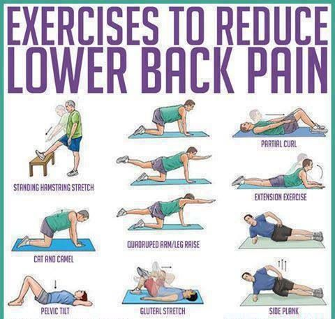 lower back pain exercises  don't worry be healthy