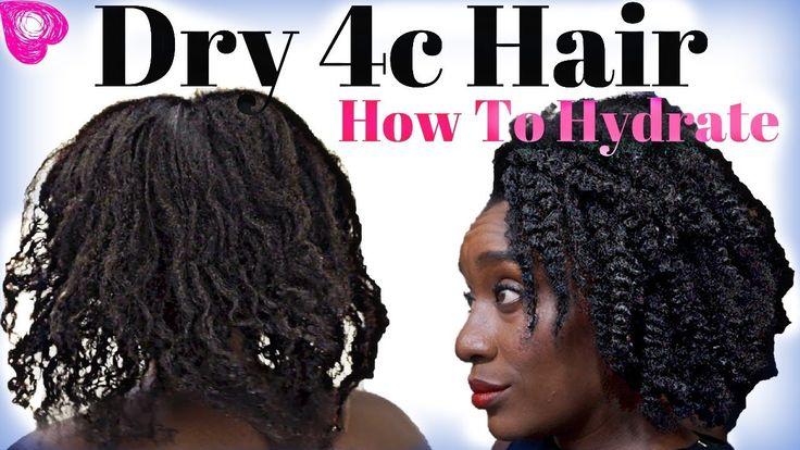 High Porosity Natural Hair Youtubers