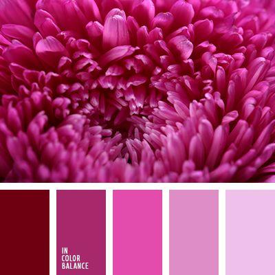 бледно-лиловый, бордовый, красный, лиловый цвет, оттенки лилового, оттенки розового, палитра цветов, подбор цвета, светло-розовый, тёмно-красный, цвет сахарных конфет, цветовое сочетание, яркий розовый.