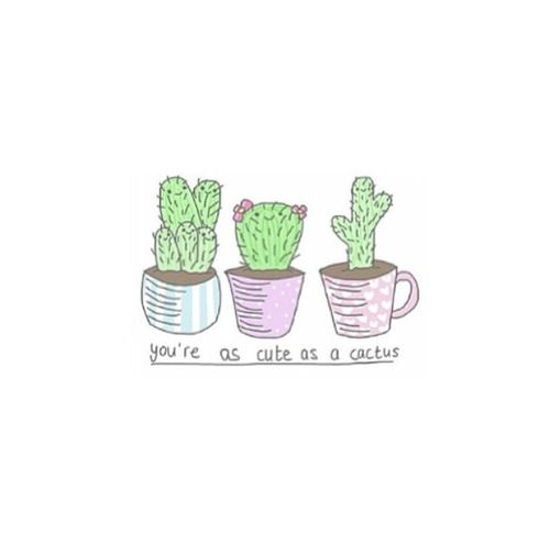 tumblr cactus drawing - Google Search | cacti | Pinterest ...