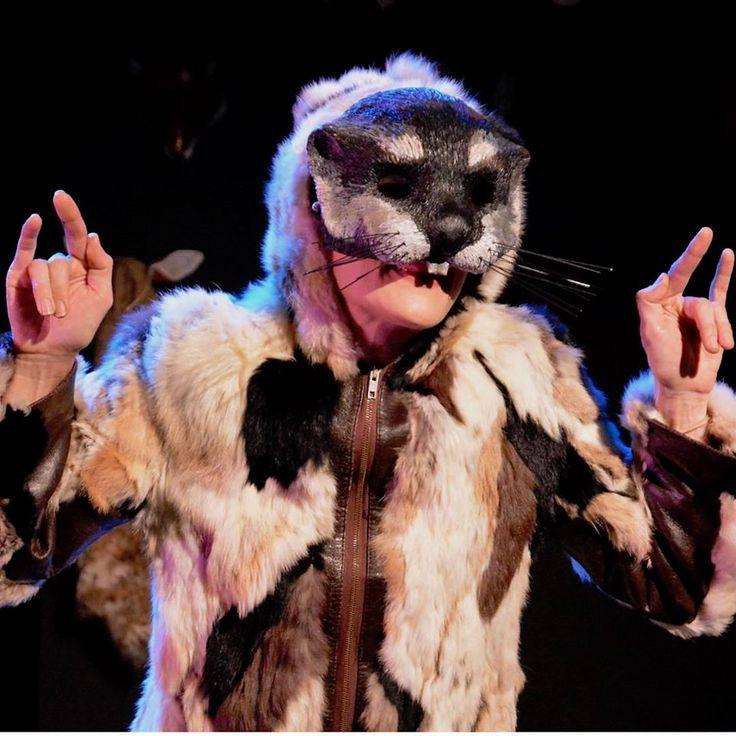 marmot, Lemming, marmot mask, woodland creature, Lemming ... - photo#12