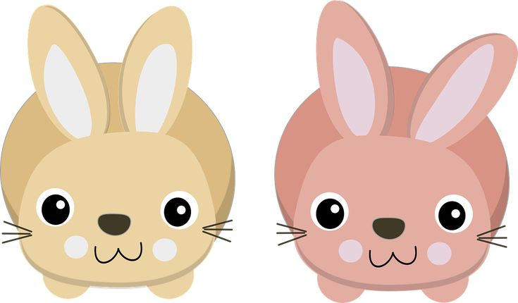 Bunnies Charts Cute Easter transparent image