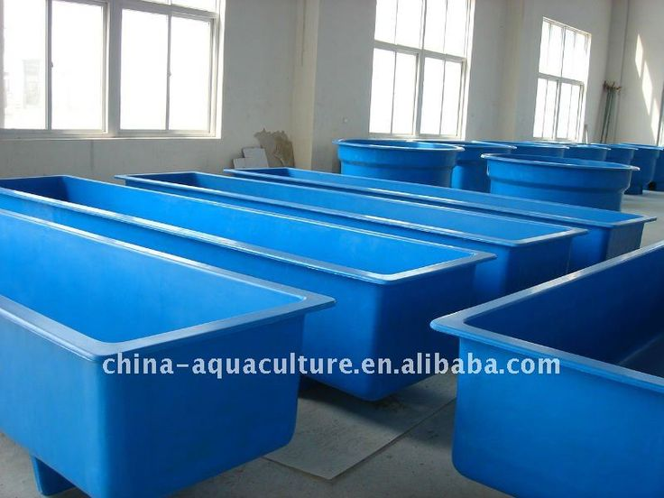 856 best images about aquaponics fish on pinterest for Fish farming tanks