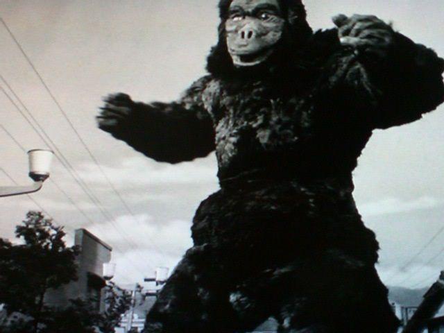 ウルトラQ-2-巨猿ゴロー