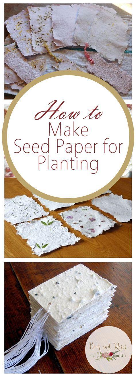 Wie man Samenpapier zum Anpflanzen herstellt