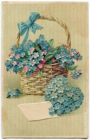 vintage forget-me-nots in basket