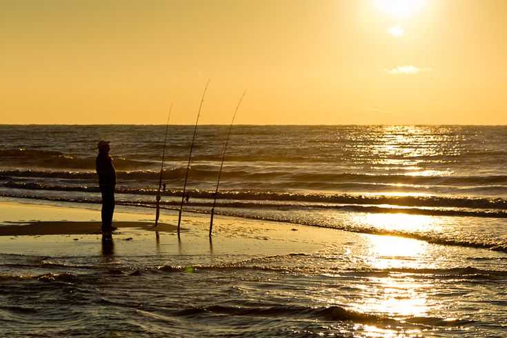 33 best images about shore fishing on pinterest surf for Gulf shores alabama fishing