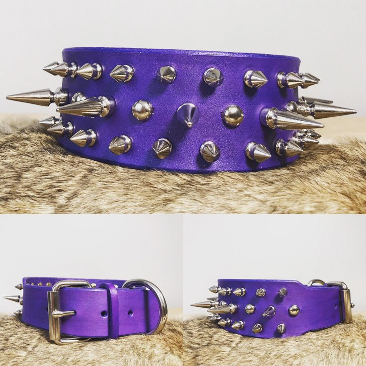 "Excited to share the latest addition to my #etsy shop: 2"" Genuine Leather Custom Spiked Dog Collar with Custom Color options"