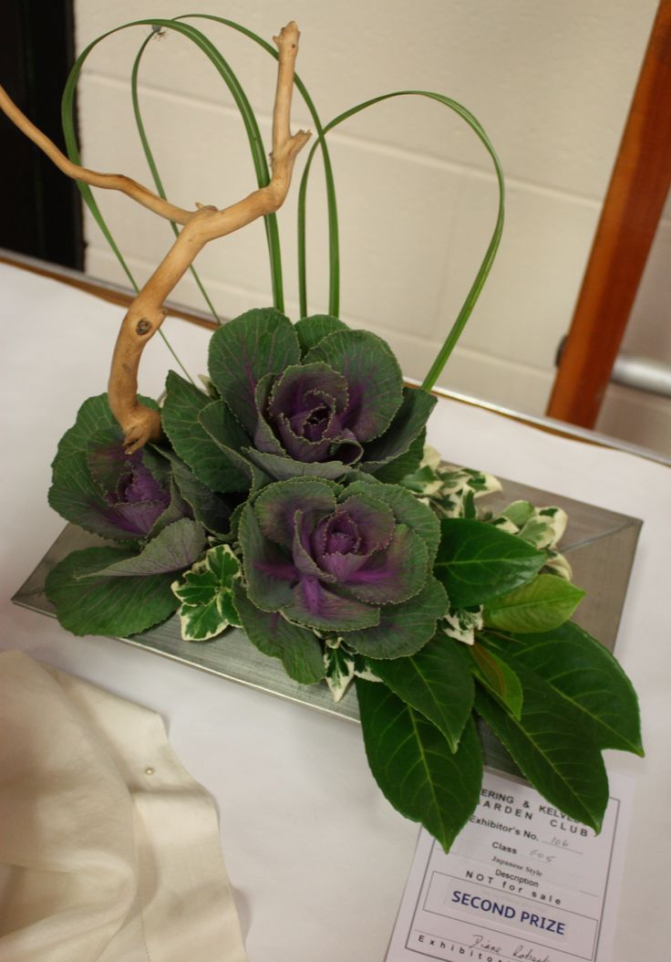 Ikibana arrangement with cabbages - lasts for ages !!