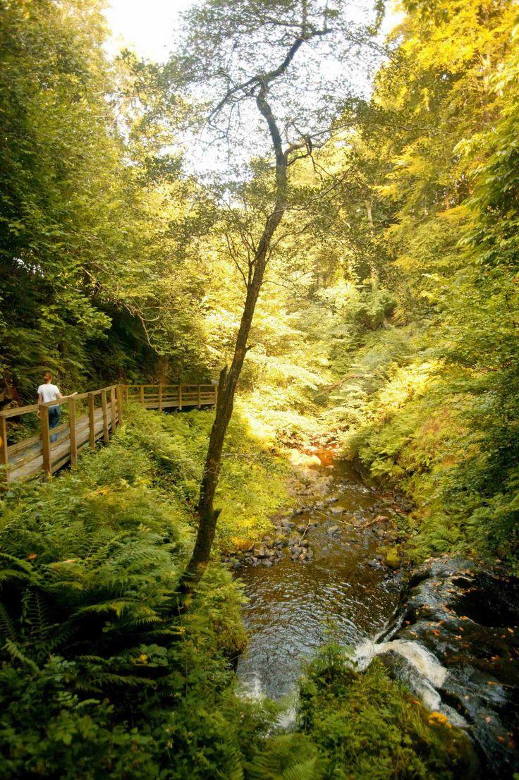 AFAR.com Highlight: Rambling in the Glens of Antrim by Yvonne Gordon