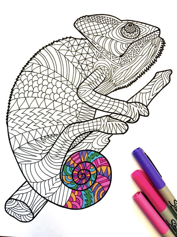Chameleon PDF Zentangle Coloring