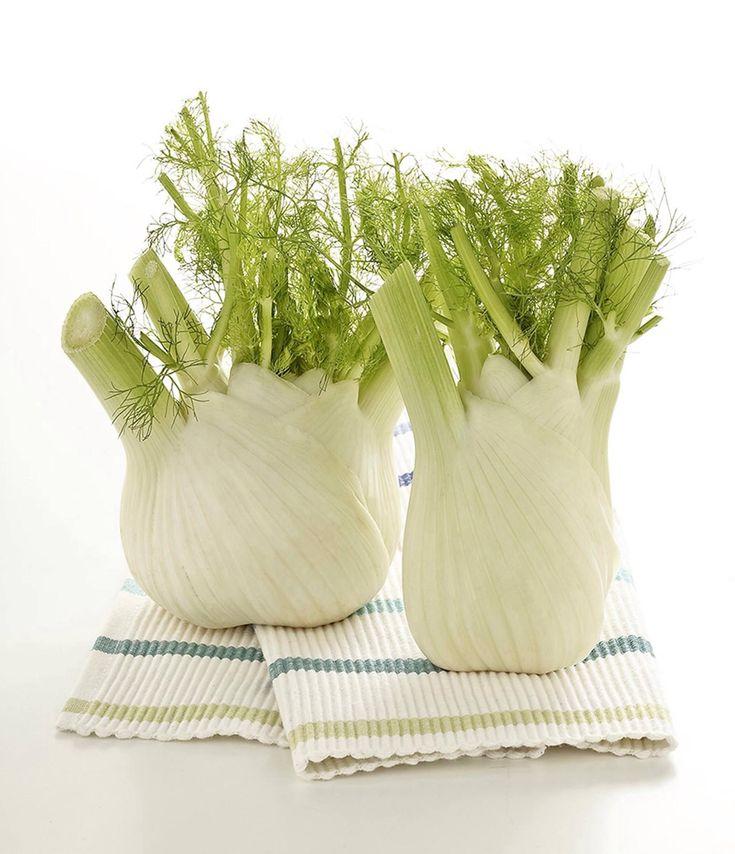Salve a tutti , oggi vi voglio parlare del Finocchio, una pianta erbacea facente parte della famiglia delle Apicaceae. Le sue proprietà e la sua coltivazio